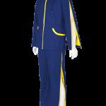 blue yellow main